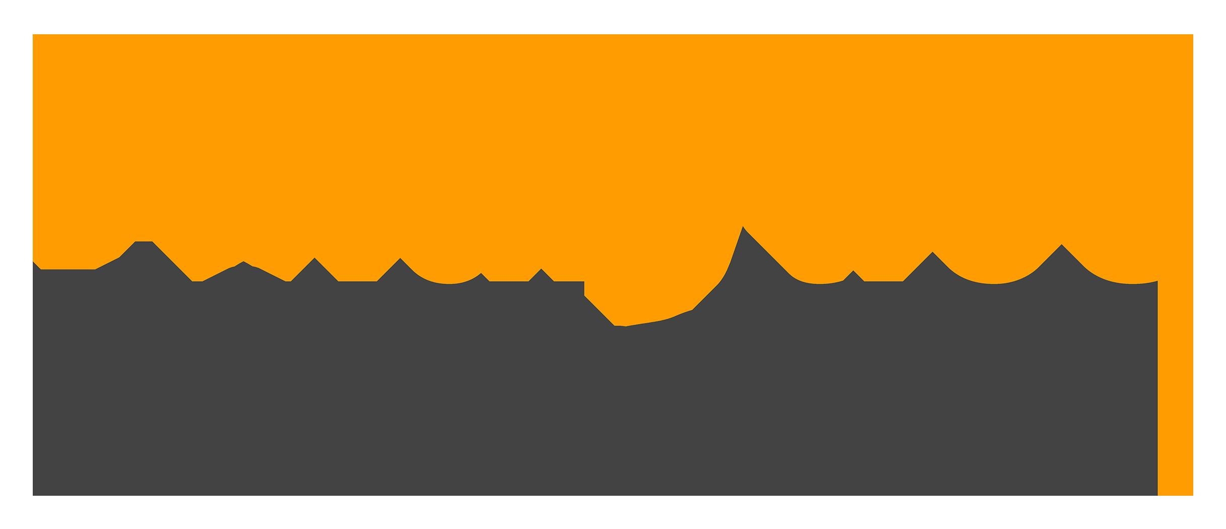 Analytics Pioneers